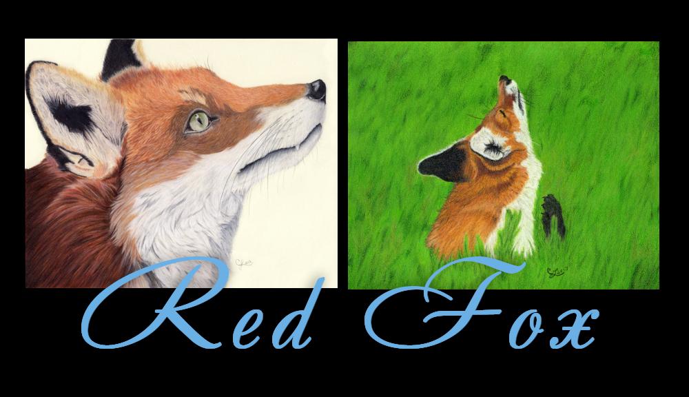 Colors-RedFox
